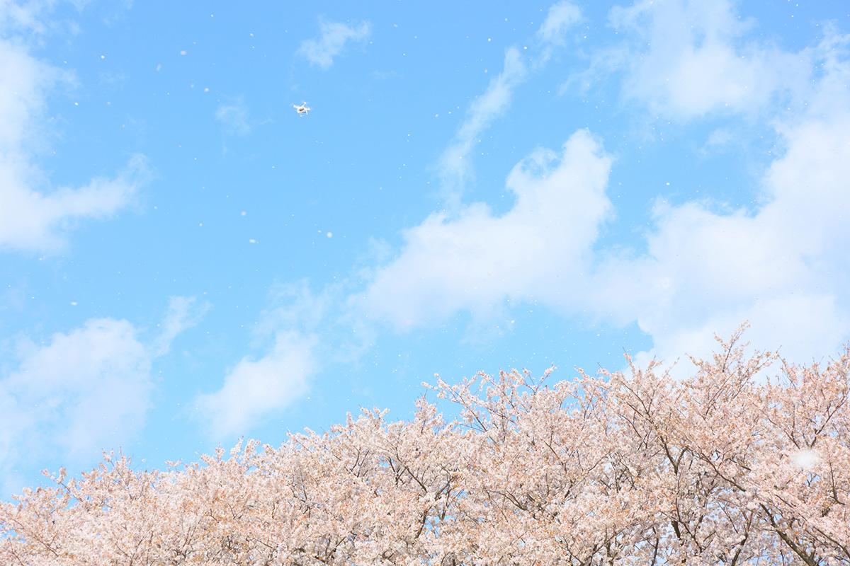 空撮イメージ