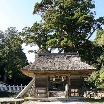 0503 隠岐 玉若酢神社