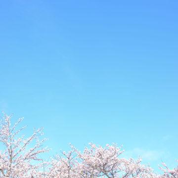 0726   松江市 玉湯