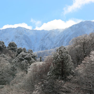0774   大山