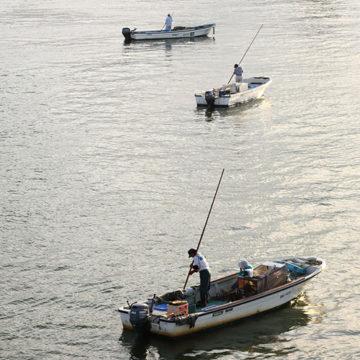 0859    大橋川 シジミ漁