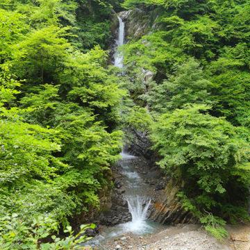 1125    琴浦町 大山滝