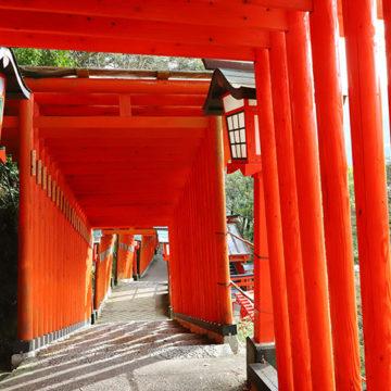 1209 津和野町 太皷谷稲成神社