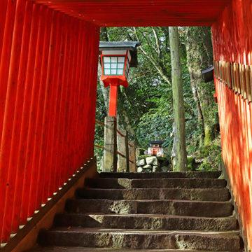1210 津和野町 太皷谷稲成神社