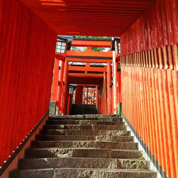 1211 津和野町 太皷谷稲成神社