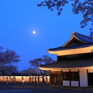 1220 松江市 国宝松江城