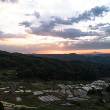1291 雲南市 山王寺の棚田
